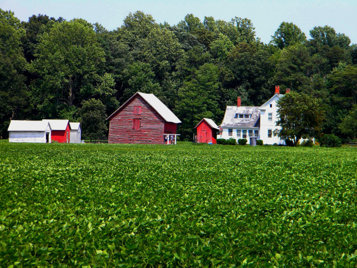 Photos Of 15 Beautiful Farms In Delaware