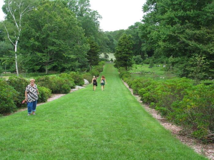 ArboretumGrass