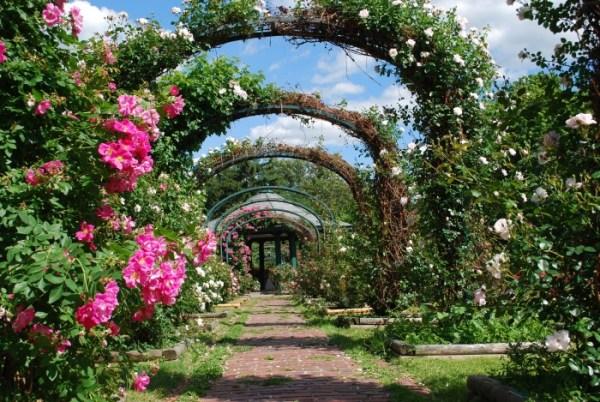 beautiful york gardens