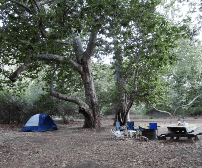 7. Big Sycamore Canyon Campground in Malibu