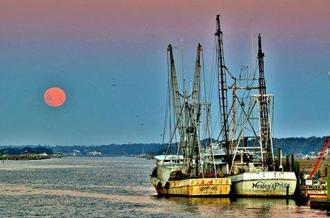 11. Shrimp boats on the Intracoastal in Holden. This photo looks straight from a travel magazine.