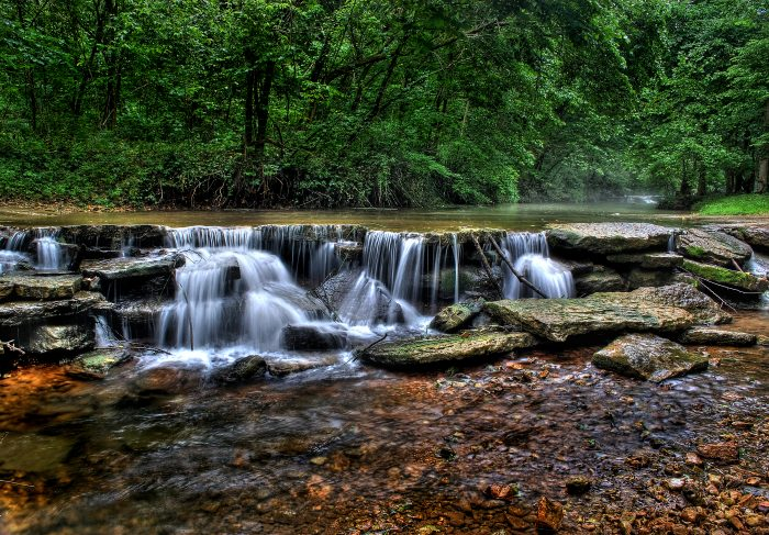 Image result for dogwood canyon run