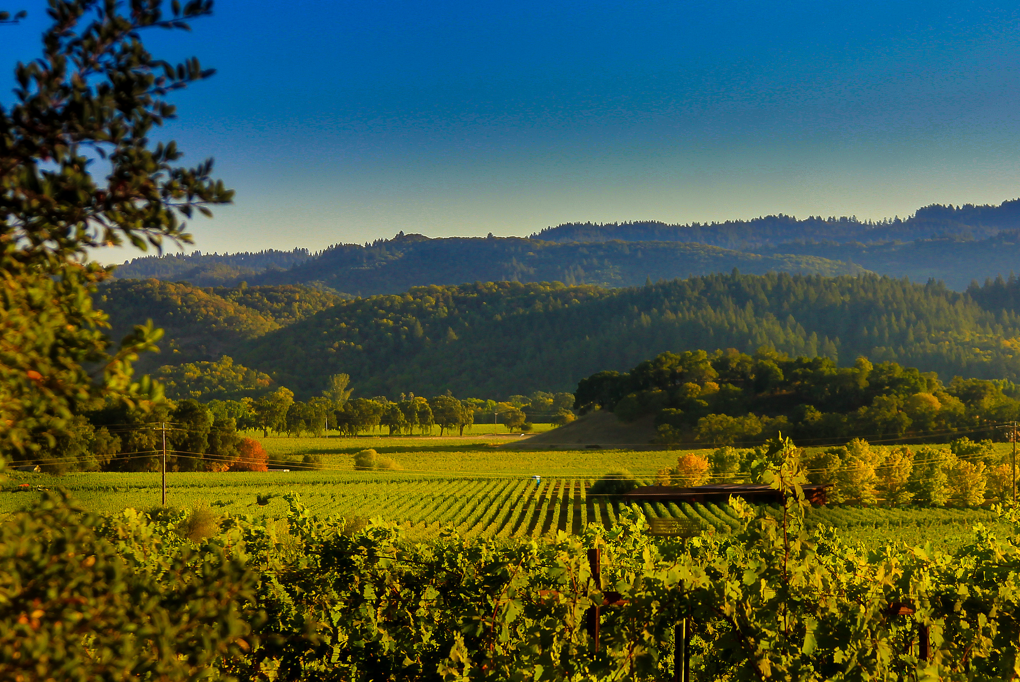 Kentucky Fall Wallpaper 7 Of The Most Scenic Byways To Drive In Northern California