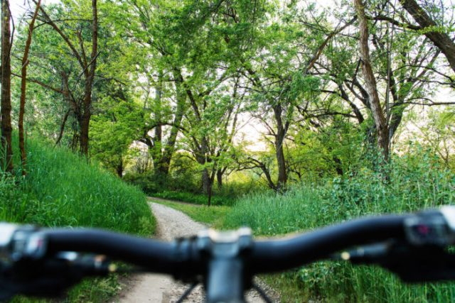 Boise's unique Ridge to Rivers urban trail system was established in 1992.