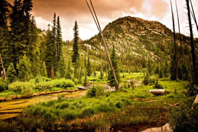 3. Marsh Creek Trail
