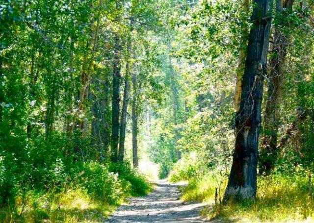 8. Draper Wood River Preserve