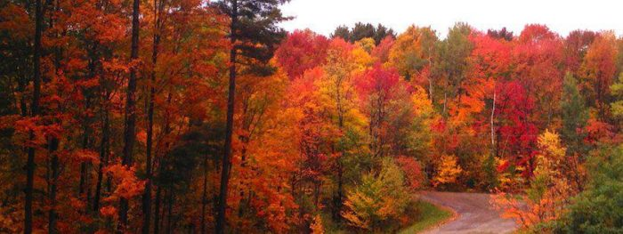 Vermont Fall Wallpaper Take This Gorgeous Fall Foliage Road Trip To See Vermont