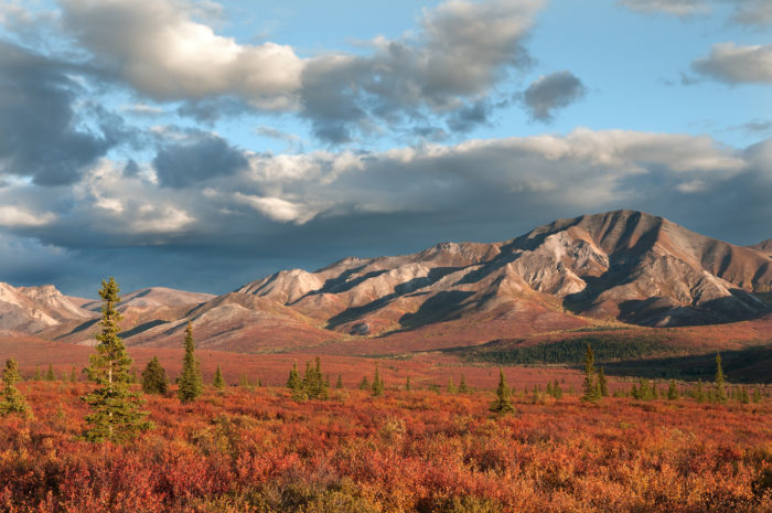Fall Leaves Wallpaper 23 Best Places To See Fall Foliage In Alaska For 2016