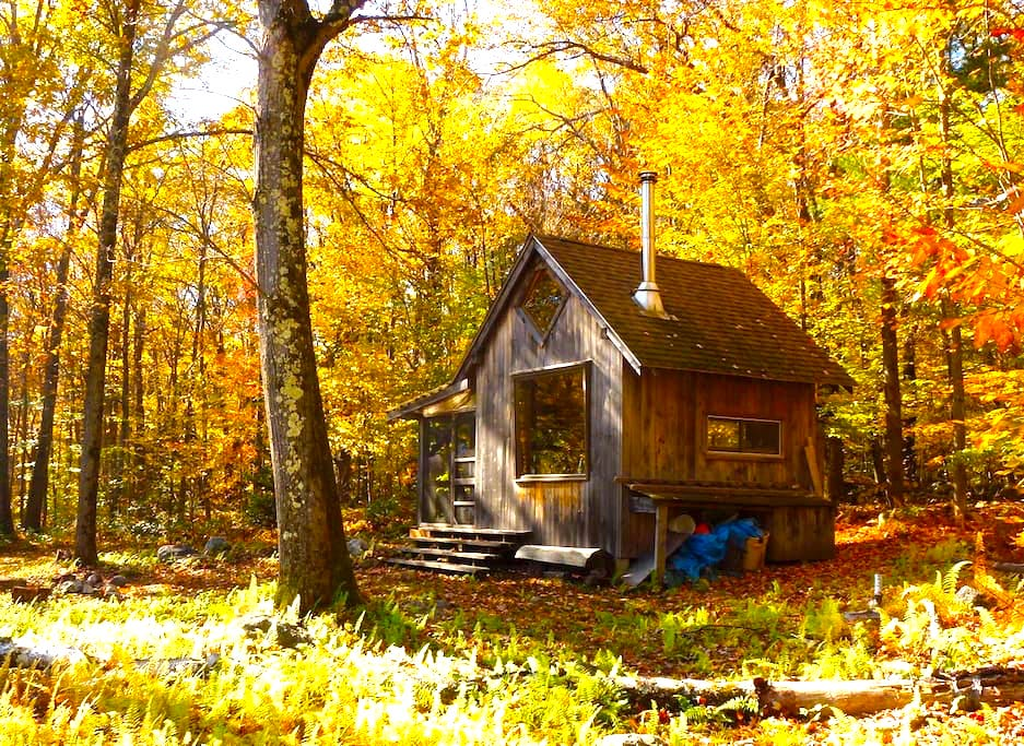 12 Massachusetts Cabins Perfect For Fall Camping