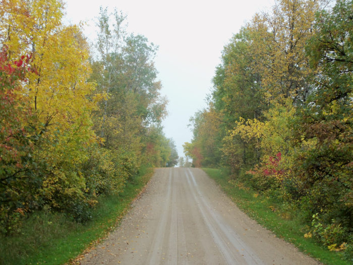 Fall Leaves Wallpaper Border 6 Best Scenic Drives For Fall Foliage In North Dakota