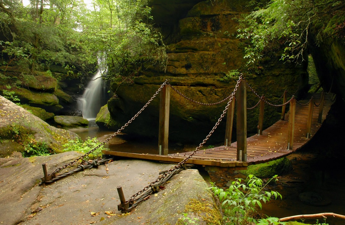 Dismals Canyon The One Place In Alabama That Looks Like