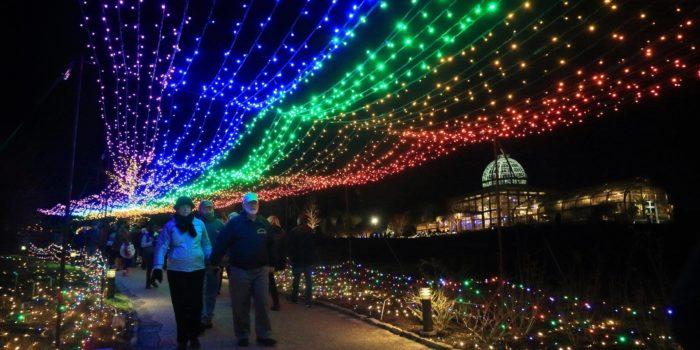 newport news christmas lights cards