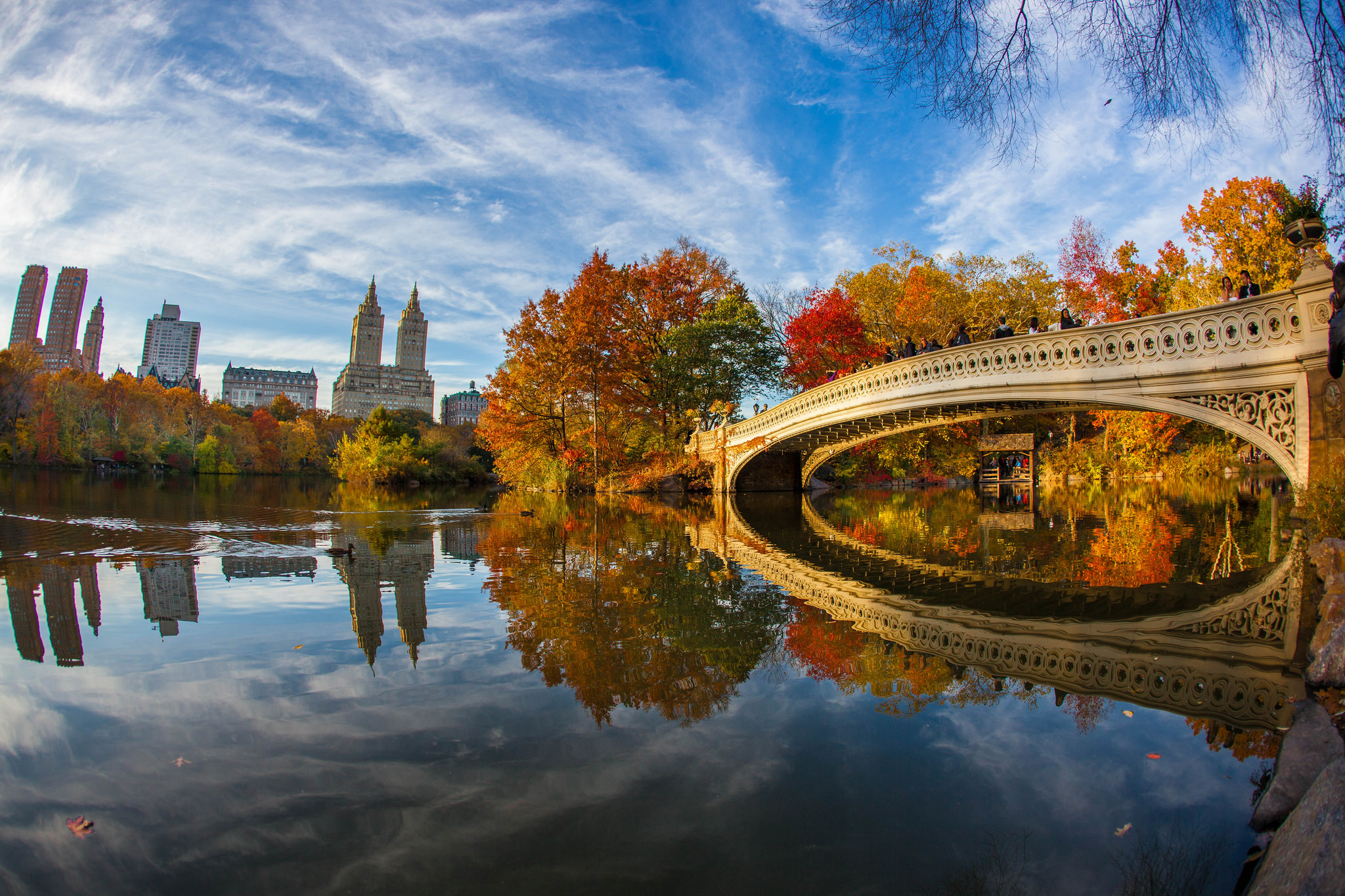 13 Fun And Free Things You Can Do In New York State