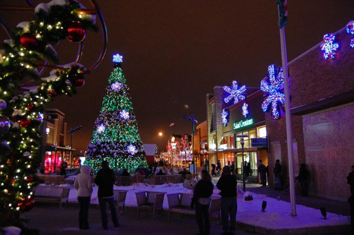 Chicago Zoo Christmas Lights
