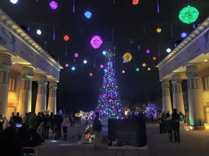 12 of the best christmas light displays in tennessee 2017