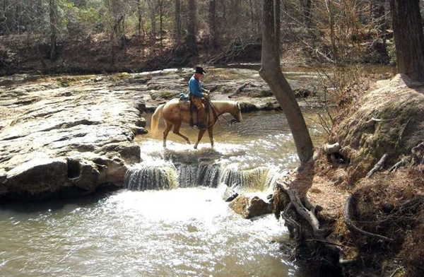 The Winter Horseback Riding Trail In Louisiana Thats Pure