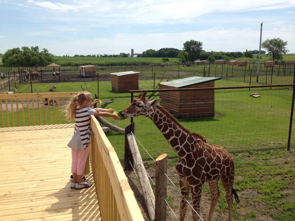 The Animal Park In Minnesota Everyone Should Visit