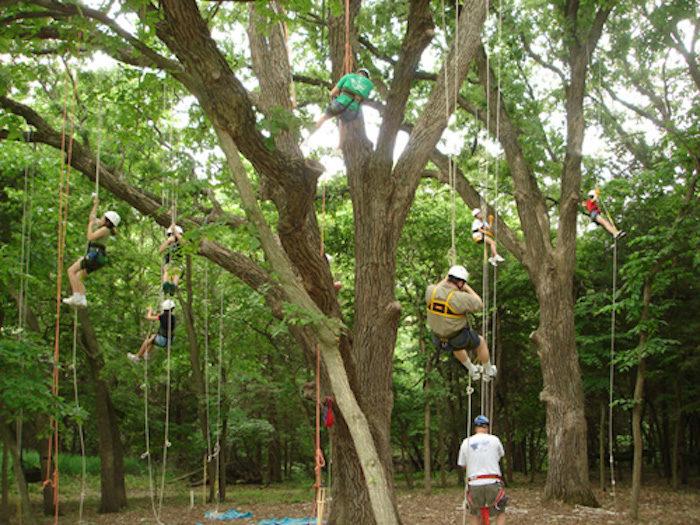 Visit The Camp Fontanelle Adventure Park In Nebraska