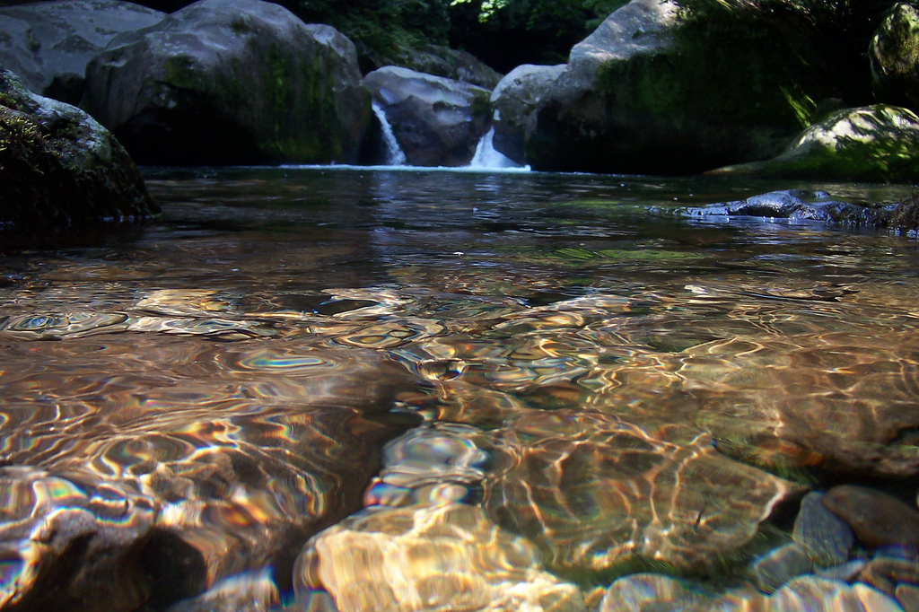 Midnight Hole Natural Swimming Hole Is A Hidden Gem In The North Carolina Smoky Mountains