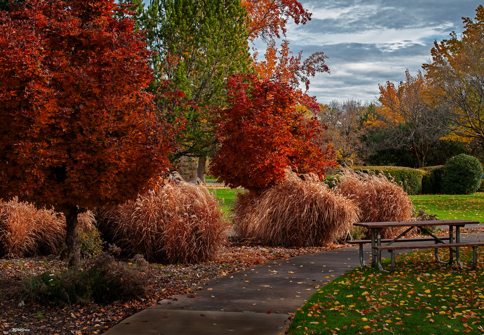 The Best Times And Places To See Fall Foliage In Idaho 2017
