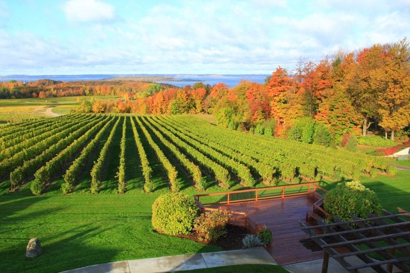 Florida Beach Fall Wallpaper 9 Of The Best Michigan Wineries To Visit In The Fall