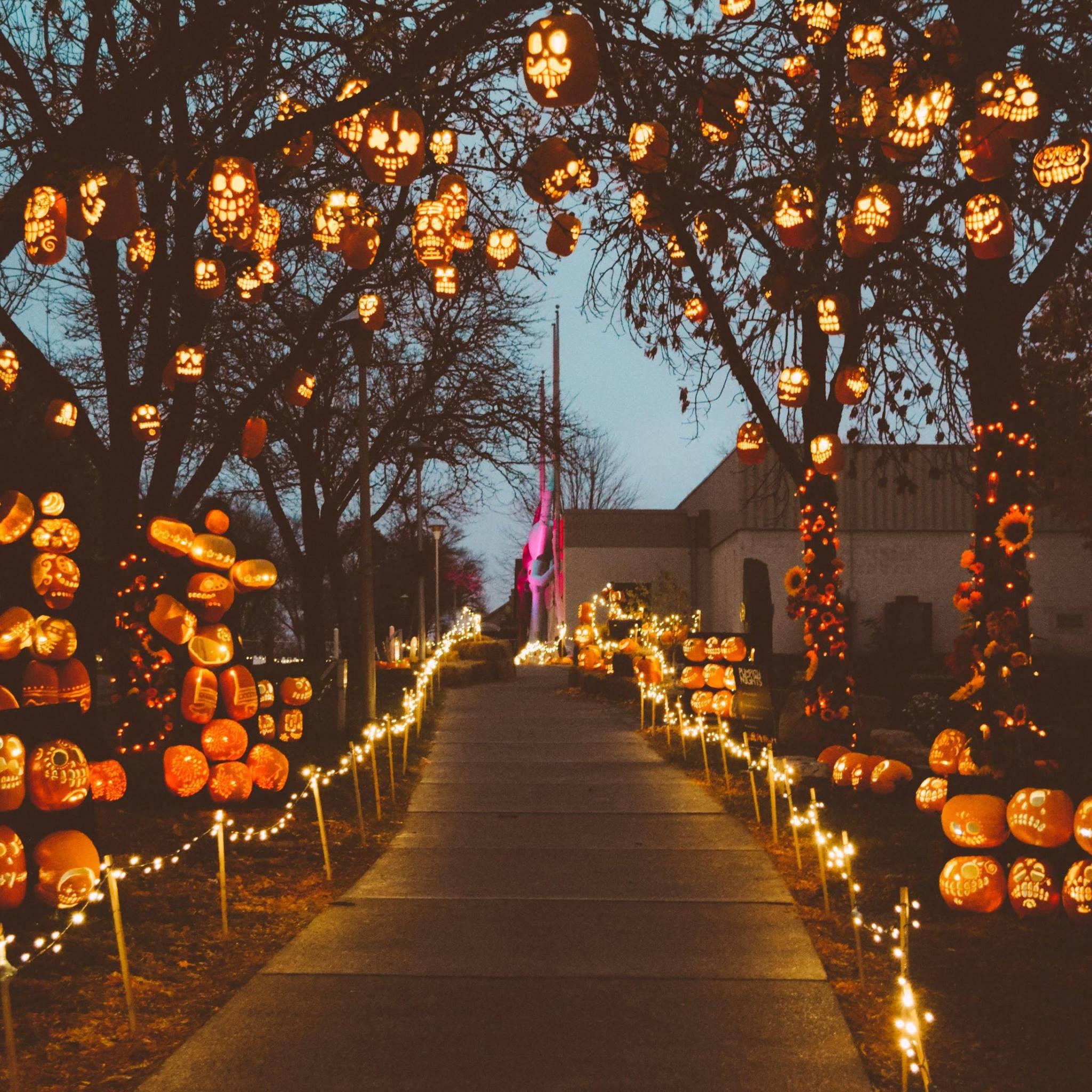 Fall Pumpkin Wallpaper Pumpkin Nights Is The Most Magical Halloween Event In