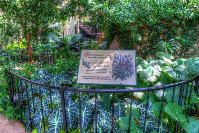 Gardens Ga North
