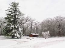 Secluded Illinois Cabins Surrounded