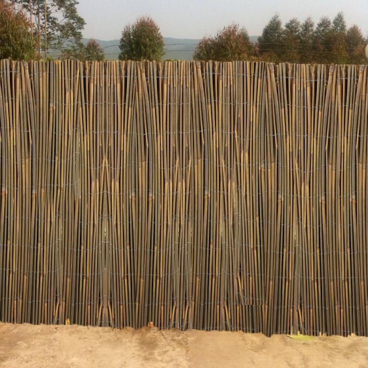 canisse en bambou entier largeur 3 m hauteur 1 80 m