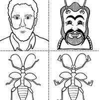 Orkin Science Education: Insect Facts, Crafts & Lesson Plans