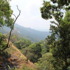 Eagle Mountain Resort Munnar In Munnar India From 46