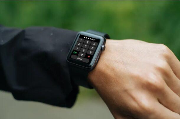 Как автоматически стереть Apple Watch после неудачных попыток ввода пароля