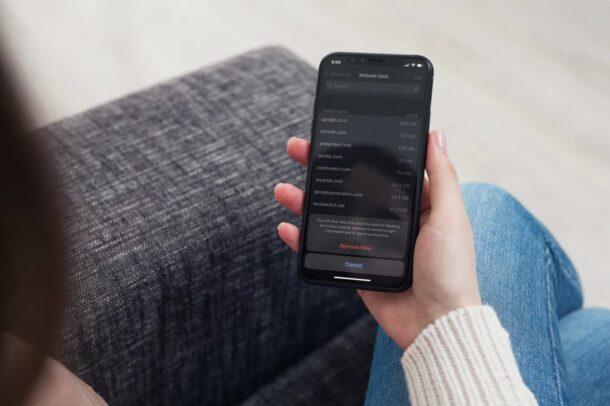 Как очистить только файлы cookie на iPhone и iPad с помощью Safari