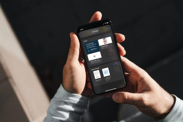 Как сохранить файлы, полученные через iMessage, на iPhone и iPad