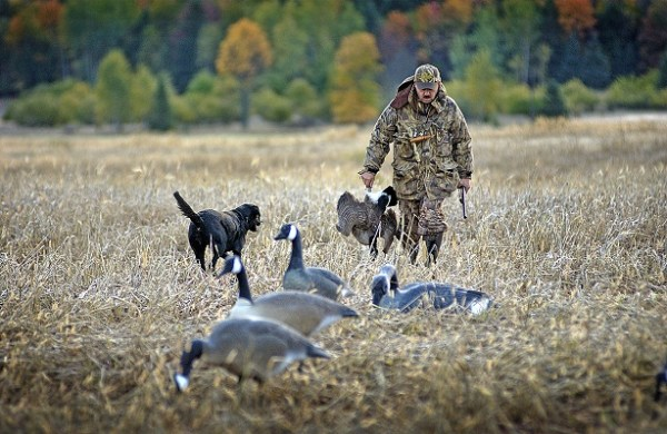 Small Game Hunting Begins Sept. 1 in Michigan | OutdoorHub