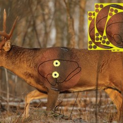 Whitetail Deer Vital Area Diagram 24 Volt Battery Wiring New Target Just In Time For Season Outdoorhub