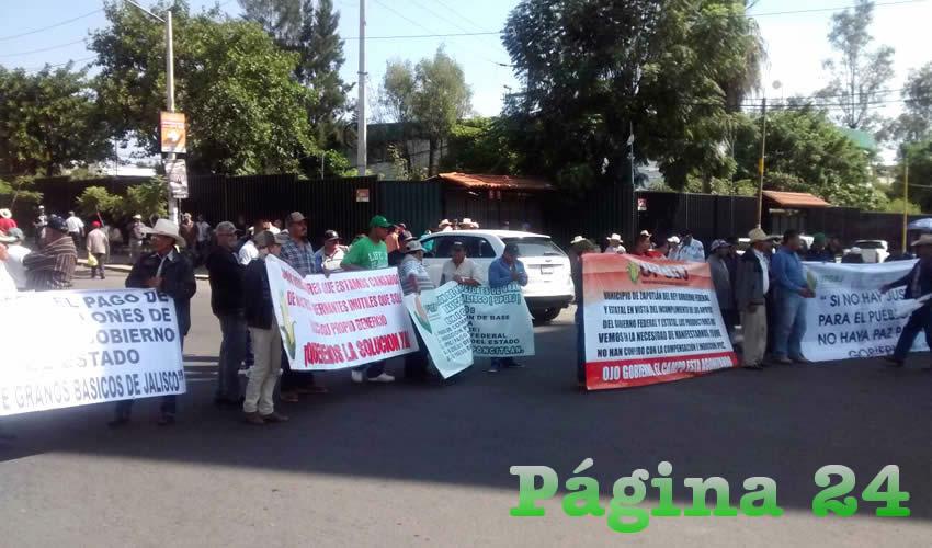 Tras la manifestación del pasado lunes afuera de la delegación Jalisco de la Sagarpa, las autoridades estatales anunciaron que mañana volverán de nuevo con los pagos a los maiceros a través del programa de agricultura por contrato/Foto: Cortesía
