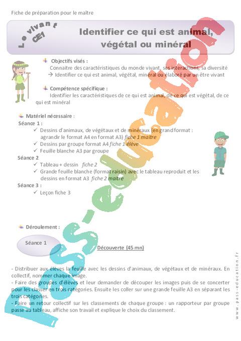 Questionner Le Monde Ce1 Le Vivant : questionner, monde, vivant, Monde, Vivant, Cycle, Exercice, évaluation, Révision, Leçon
