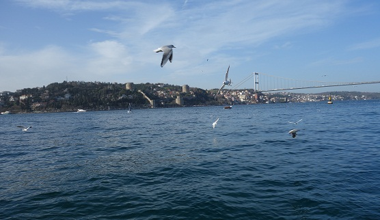 Bosphorus Bridge and Rumeli Fortress.jpg