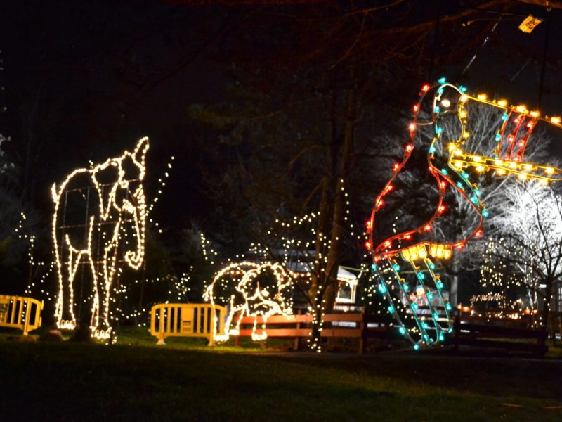 Turtle Back Zoo Holiday Lights 2017