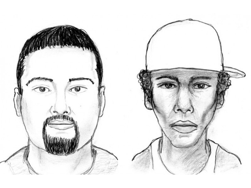 Police Release Sketches of Men Wanted in Garden City Park