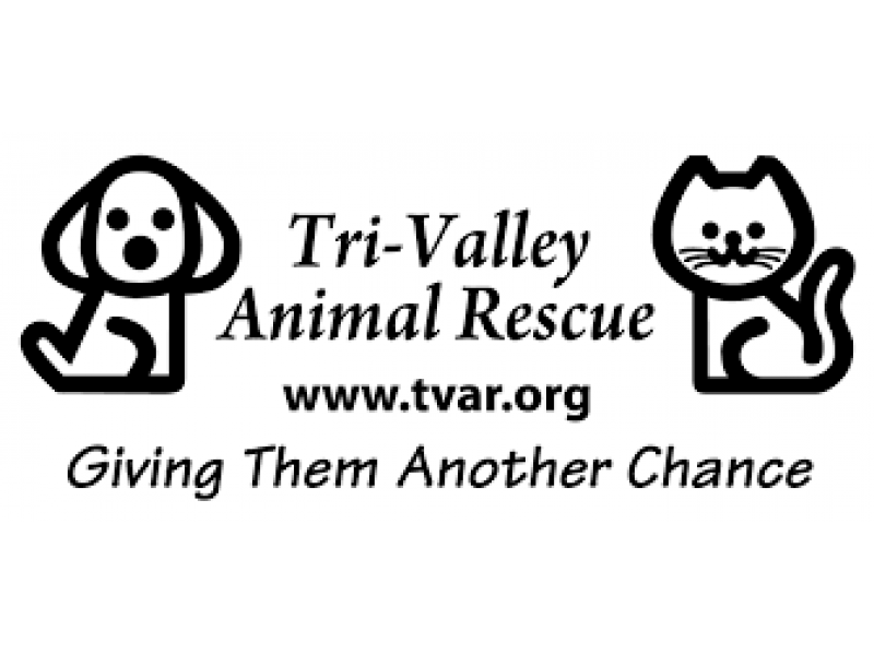 TRI-VALLEY ANIMAL RESCUE offering FREE pets to qualified
