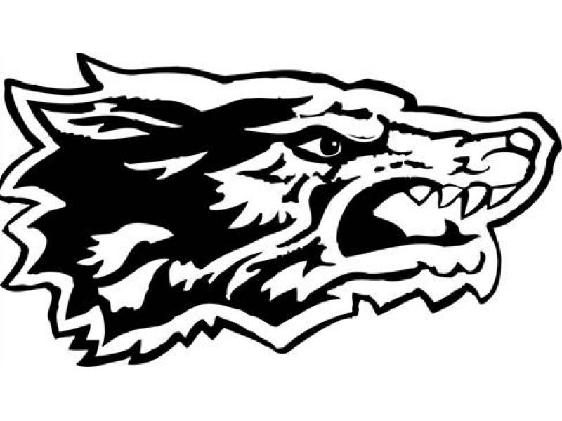 Oswego East High School Internship Program needs YOUR help