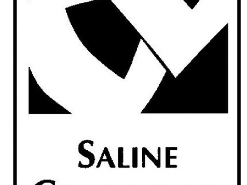 Saline Community Education Offers Summer Sport Camps