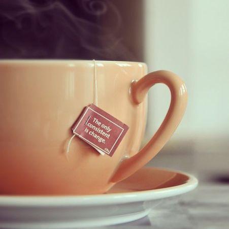 Yogi Tea infusi ayurvedici biologici, rispettosi dell'ambiente e delle persone, dal gusto intenso, ma equilibrato. .