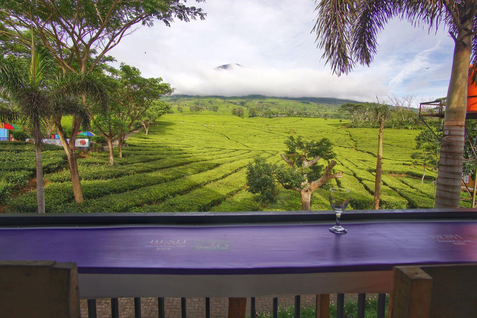 Besh Hotel Pagaralam Penginapan di kaki Gunung Dempo