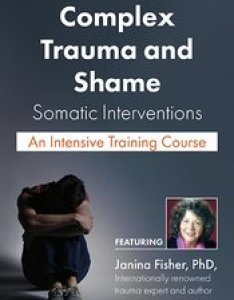 Complex trauma and shame also product detail rh psychotherapynetworker