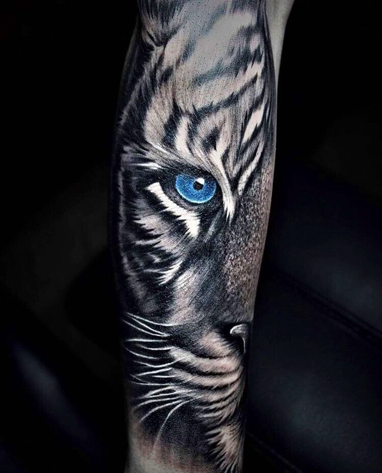 Animal Eyes Tattoo : animal, tattoo, Realistic, Tattoos, Tiger, Tattoo, Designs, PetPress