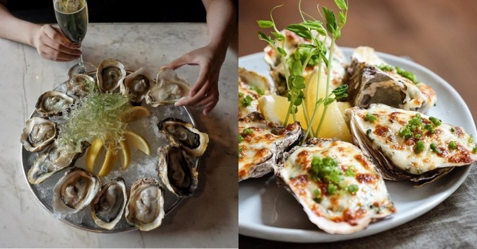 13 Must-Visit Restaurants for Fancy yet Delicious Oyster Dishes to Try this  Valentine's Day   Booky