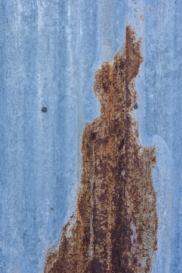 Verm-rust-BANWR-4869
